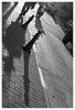 -imgp5978-shadow-hat.jpg