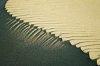 -dune.jpg