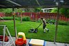 -luke-mowing-small.jpg