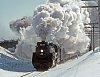 -steam-power-6218.jpg