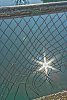 -fence1.jpg