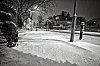 -snow-23123_edited-3.jpg