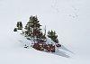 -alpine-oasis.jpg