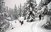 -skiing-snow-pass.jpg