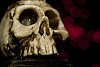 -skullkeh.jpg