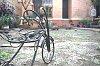 -triciclo-copia.jpg