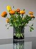 -tulips-buttercups.jpg