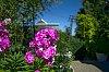 -kpl-spring_colors.jpg
