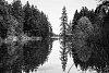 -lake-trees.jpg