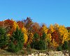 -autumn-colors-wisconsin.jpg