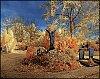 -pentax-contest_panorama132.jpg