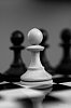 -white-pawn.jpg