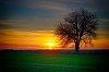 -sunset.jpg