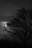 -moon..jpg