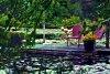 -dock-pond-1.jpg