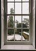 -window.jpg