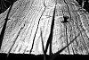 -plank-low-key-effect.jpg