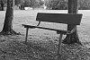 -bench.jpg
