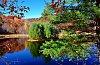 -autumn-nov20-2015-9of95-af.jpg
