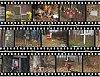 -cwwh_roadside-memorials01-very-condensed.jpg
