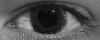 -winter-eye.jpg