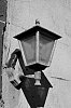 -imgp3782lamp.jpg