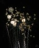 -tam90-fireworks-4.jpg