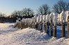 -amezz-winter-fence.jpg