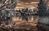 -imgp8981_tonemapped-ir-westfield-heron-reserve.jpg