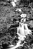 -waterfall1.jpg