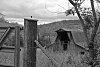 -barns-buildings-266-bw-.jpg