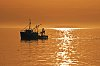 -pr008-fishing-gold-pentax-comp.jpg