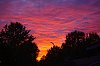 -backyard-sunset.jpg