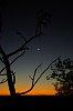 -etosha-sunset-moon-imgp4427.jpg