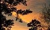 -sunset-2-.jpg