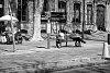 -bench_aix_en_provence_2013.jpg
