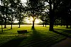 -benches.jpg