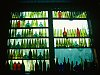 -nepenthe-bottle-wall-r.jpg