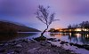 -a011606-purple-rain.jpg