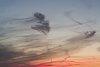 -marbled-skies.jpg
