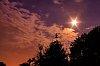 -back-yard-night-sky.jpg