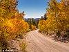 -pentax-autumn.jpg