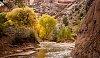 -canyon-de-chelly-fall.jpg