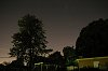 -trees-night.jpg