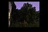 -composite-fireflies-lightning-lit-sky.jpg