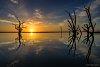 -bonnie-sunrise-1.jpg
