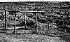 -sellers-shelter-pine-ridge-bw1xp.jpg