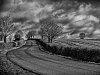 -black-white-road.jpg