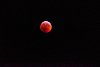 -blood-moon-cold-night-michigan..jpg