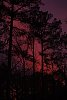 -sunset-march-2020.jpg